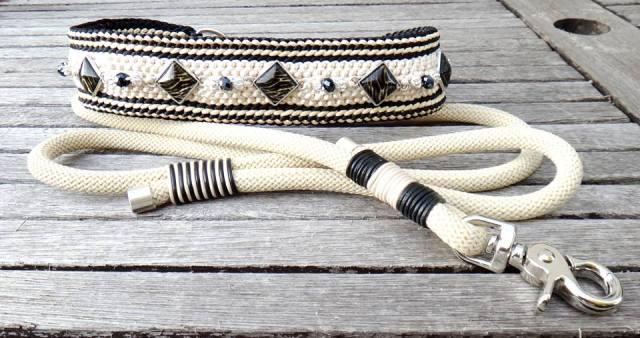 zebra beige und passende leine